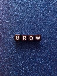 agencia-marketing-grow-digital-growth